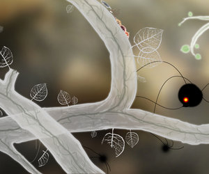 Botanicula Screenshots