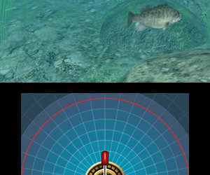Reel Fishing Paradise 3D Chat