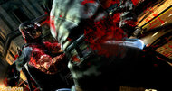 Ninja Gaiden 3 screens appear online