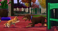 The Sims 3 gets Pets, new standalone expansion