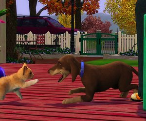 The Sims 3 Pets Chat