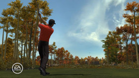 Tiger Woods PGA Tour 08 Screenshot from Shacknews