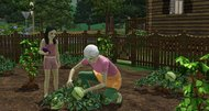 The Sims 3 'Hidden Springs' DLC