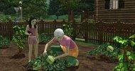 The Sims 3 'Hidden Springs' DLC