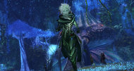 Guild Wars 2 beta signups open for 48 hours