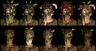 The Elder Scrolls V: Skyrim character variations