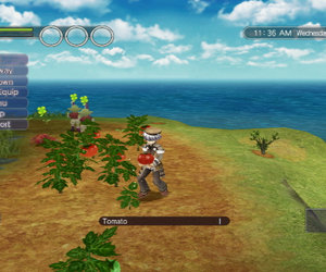 Rune Factory: Tides of Destiny Screenshots