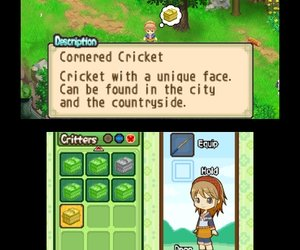 Harvest Moon: The Tale of Two Towns Screenshots