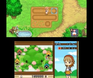 Harvest Moon: The Tale of Two Towns Chat