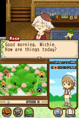 Harvest Moon: The Tale of Two Towns Files