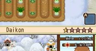 Harvest Moon: The Tale of Two Towns DS screenshots
