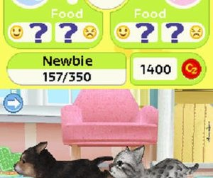 Petz Puppyz & Kittenz Screenshots