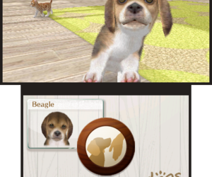 Nintendogs + Cats: French Bulldog & New Friends Screenshots