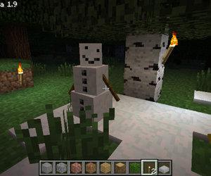 Minecraft Screenshots