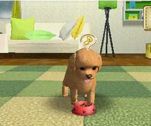My Pet Puppy 3D Screenshots