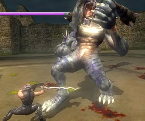 Ninja Gaiden Sigma Plus Screenshots