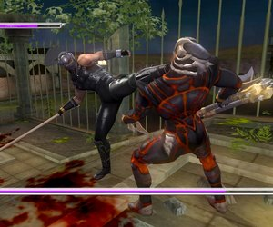 Ninja Gaiden Sigma Plus Chat