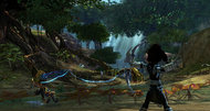 Guild Wars 2 pre-purchasing begins with beta access