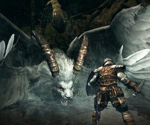 Dark Souls: Prepare to Die Screenshots