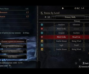 Dragon's Dogma Chat