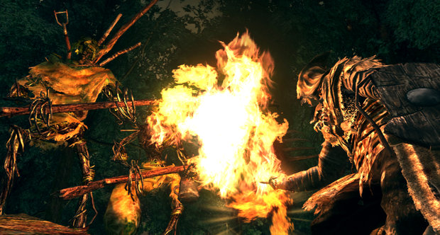 Dark Souls: Prepare to Die Edition screenshots
