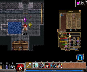 Dungeons of Dredmor: Conquest of the Wizardlands Files