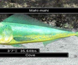 Reel Fishing Ocean Challenge Screenshots