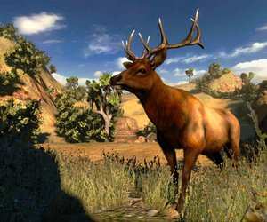 Cabela's Hunting Expeditions Chat