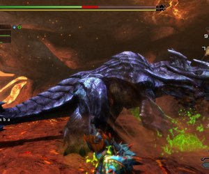 Monster Hunter 3 Ultimate Screenshots
