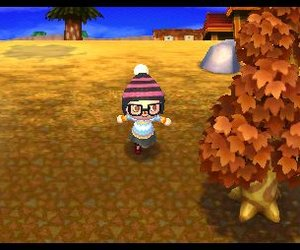 Animal Crossing: New Leaf Screenshots