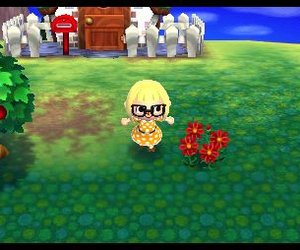 Animal Crossing: New Leaf Videos