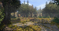 Legend of Grimrock 2 first screen shows forest