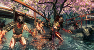 Shadow Warrior announcement screenshots