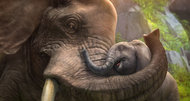 Zoo Tycoon E3 2013 screenshots