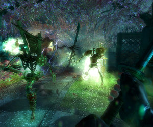 Shadow Warrior Files