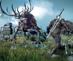 The Witcher 3: Wild Hunt Files