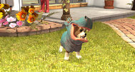 PlayStation Vita Pets sure looks familiar