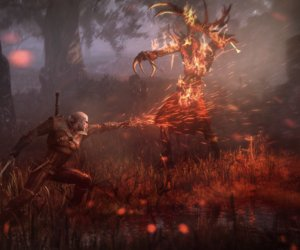 The Witcher 3: Wild Hunt Screenshots