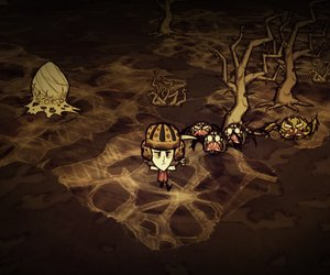 Don't Starve Files
