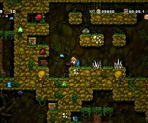 Spelunky Files