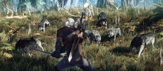 The Witcher 3: Wild Hunt News
