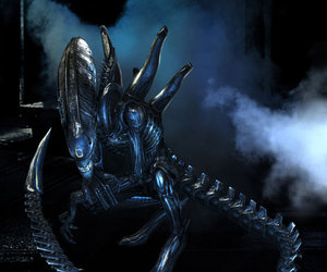 Aliens vs. Predator Files