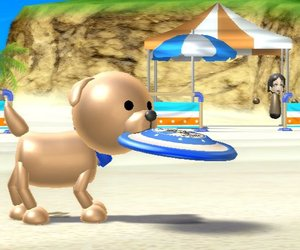 Wii Sports Resort Files