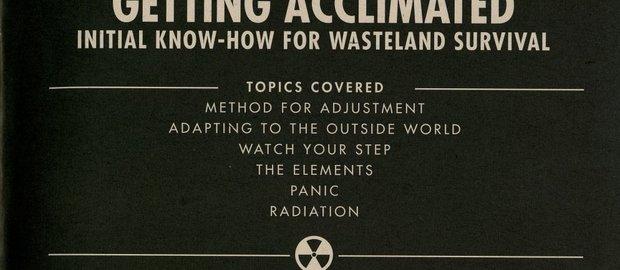 Fallout 3 News