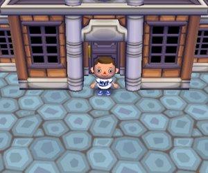 Animal Crossing: City Folk Chat