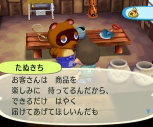 Animal Crossing: City Folk Files