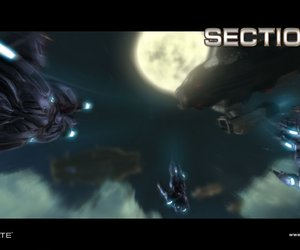 Section 8 Videos