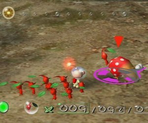 New Play Control! Pikmin Chat