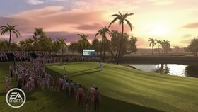 Tiger Woods PGA Tour 10 Screenshot from Shacknews