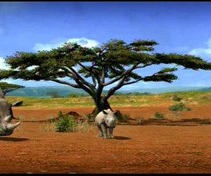 Afrika Chat